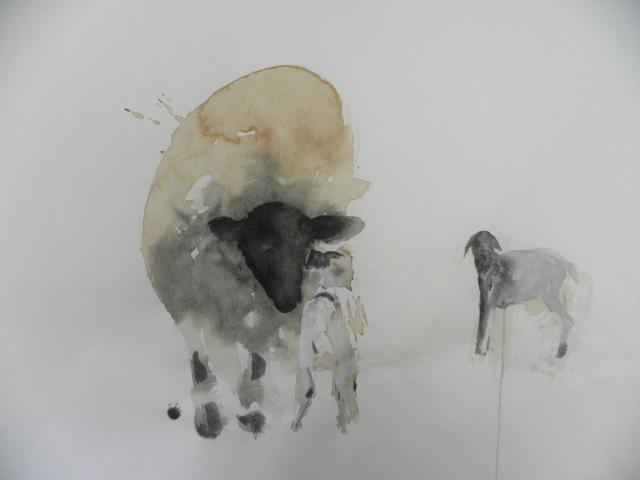 lamb detailsm.jpg